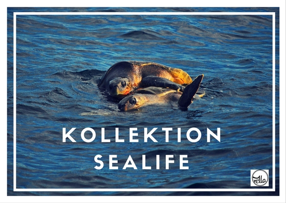 koll-sealife