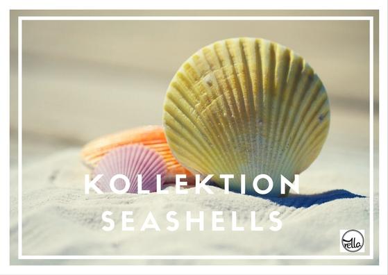 koll-seashells